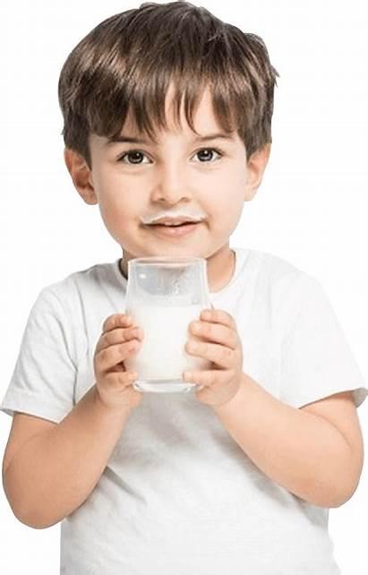 Milk Boy Ghee A2 Cow Fresh