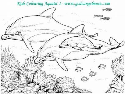 Coloring Pages Printable Scenery Nature Landscape Flower