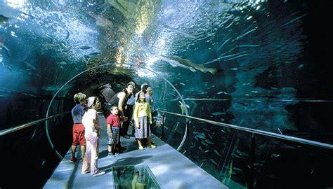 aquarium a visiter en plans enfants s 233 bastien tourisme