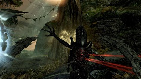 aliens  predator hd wallpaper background image