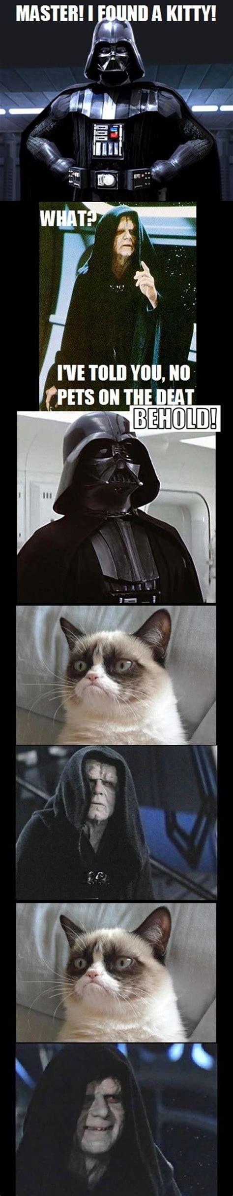 Funny Star Wars Grumpy Cat Funny Pinterest