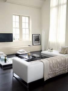 Peinture Murale Blanche : peinture blanche pour salon design astral ~ Nature-et-papiers.com Idées de Décoration