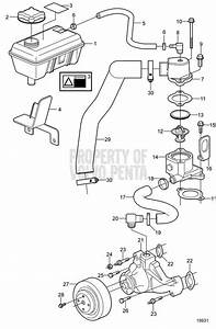 Volvo Penta Exploded View    Schematic Circulation Pump And