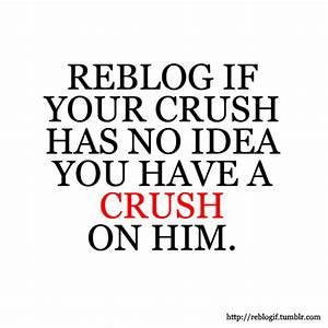 secret crush on Tumblr