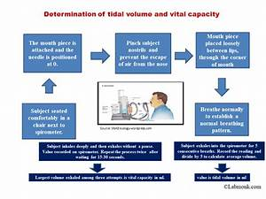 Determination Of Tidal Volume And Vital Capacity