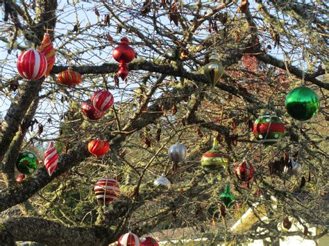 outdoor lighted tree ornaments santa miriams creative and god happenings as i pedaled my