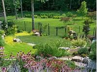 backyard landscape ideas Backyard Ideas   HGTV
