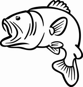 Bass Fish Outline Coloring Pages | Best Place to Color