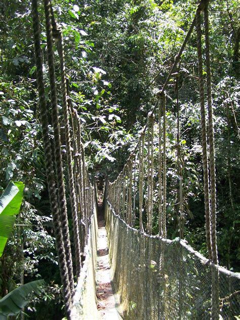 pusat pendidikan konservasi alam bodogol bogor yoshiewafa