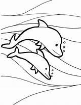 Dolphin Coloring Dolphins Dolfijnen Printable Preschool Kleurplaten Kleurplaat Kleuters Thema Waves Liedjesteksten Kinderen Shark Mermaid Verf Knutselen Zee Notakaarten Schoolprojecten sketch template