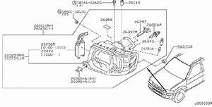 Infiniti Qx4 High Intensity Discharge  Hid  Headlight