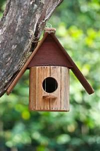 Vogelhaus Zum Selber Bauen : vogelhaus selber bauen vogelhaus selber bauen with ~ Michelbontemps.com Haus und Dekorationen