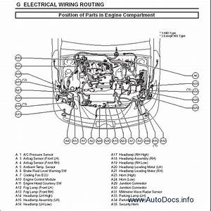 Lexus Es350 Repair Manual Order  U0026 Download
