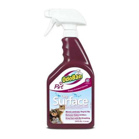 17 best ideas about vomit cleaner on clean