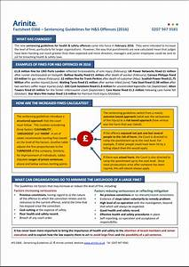 Sentencing Guidelines Chart 2017 Factsheets Archive Arinite