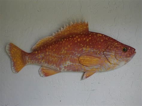 grouper fishes pc wood prices chrisdixonstudios