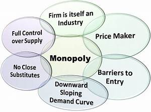 What Is Monopoly Market  Definition  Meaning And Features
