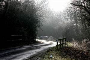 'IF YOU GO DOWN INTO THE WOODS TODAY……' Britain's Most ...