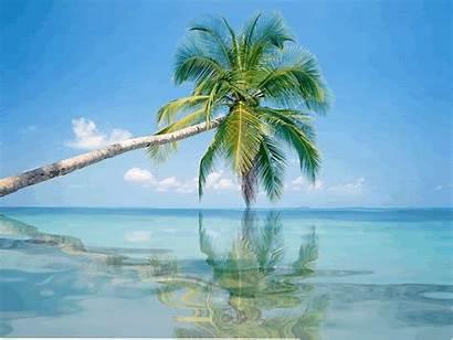 Animated Clipart Sun Paradise Transparent Maldives