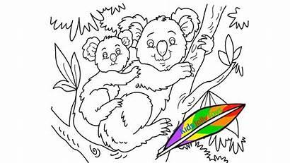 Koala Funny Coloring Drawing Bear источник Jolly