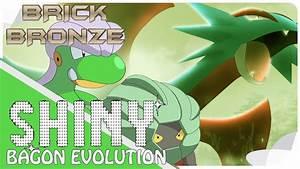 Roblox: Pokemon Brick Bronze - SHINY BAGON, SHELGON AND ...