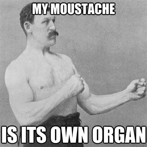 Overly Manly Man Meme - men with facial hair it s time to shave it s been ruined shave now save yourselves ign boards
