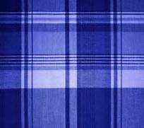 Blue Plaid Fabric Back...