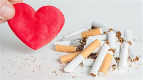 body   quit smoking