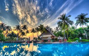 Palm, Trees, Pool, Orange, Sky, Sunset, 4k, Wallpapers, For