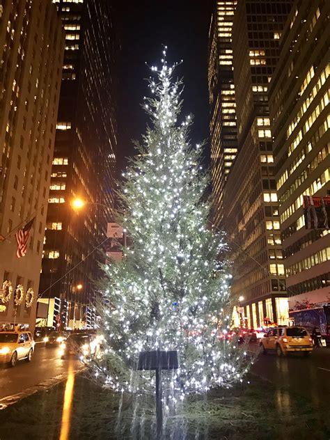 christmas   york city big apple curry