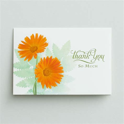 Thank You  Thank You For Your Sympathy  12 Boxed Cards Dayspring