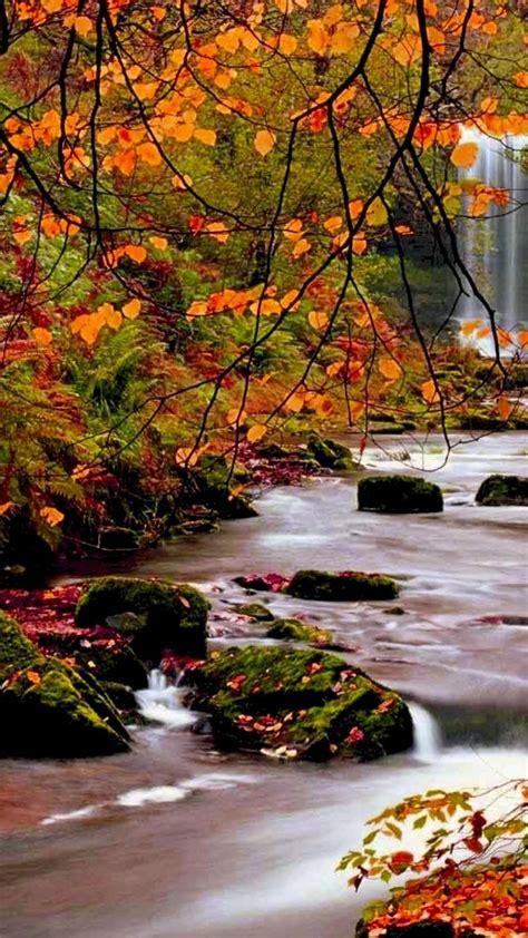landscapes nature autumn falls streams riverside rivers