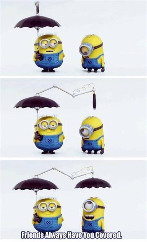 Minions Memes - the best minion memes ever