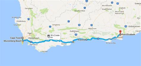 driving  garden route south africa koala