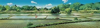 Totoro Ghibli Studio Neighbor 1080 Dual Wallpapers