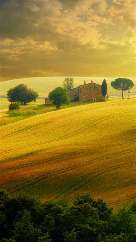 wallpaper tuscany italy hills field  nature