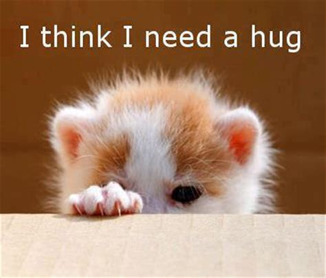 i think i need a hug pictures