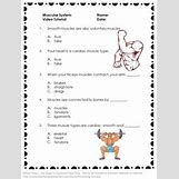 Human Body Systems For Kids Worksheets | 263 x 350 jpeg 18kB