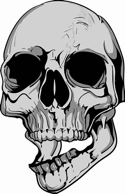 Skull Jaw Mouth Drawing Clipart Open Askew