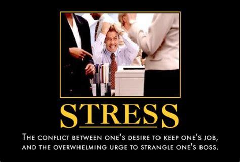 Stress Memes - stress meme guy