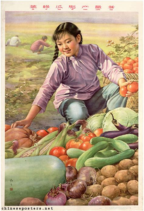 ccp cuisine jin meisheng the vegetables are green the cucumbers plumb the yield is abundant