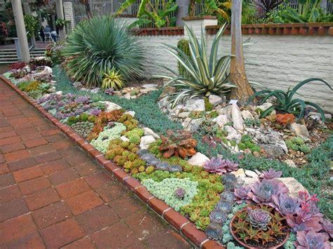 20 ideas para decorar un lindo jard 237 n con suculentas