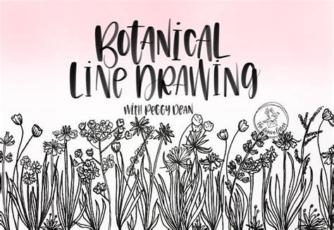 beautiful flower  drawings ideas  pinterest