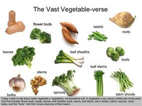 list of edible root the vast vegetable verse today i
