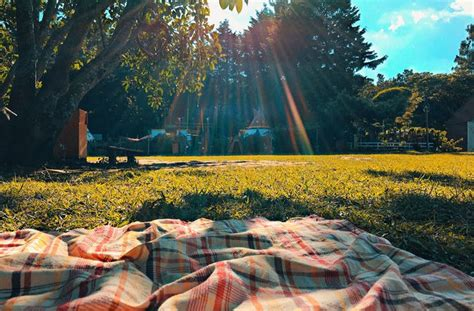 Maybe you would like to learn more about one of these? Best Places To Have A Picnic In Sydney | Urban List Sydney
