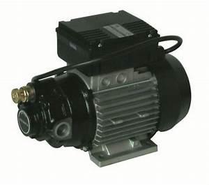 Pompe A Huile Electrique : acheter pompe a huile electrique ~ Gottalentnigeria.com Avis de Voitures