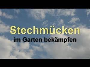Algen Im Teich Hausmittel : bek mpfung von m ckenlarven music search ~ Lizthompson.info Haus und Dekorationen