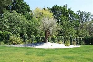 Massif Autour Piscine : cr ation d 39 un jardin contemporain baden 56 arbor mineral paysagiste cr ateur de votre ~ Farleysfitness.com Idées de Décoration