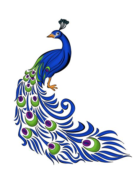 image collections png  peacock   icons