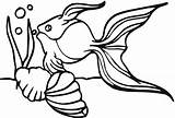 Goldfish Coloring Sheet Kolorowanki Printable Follow Coloringme Rybki Creative sketch template